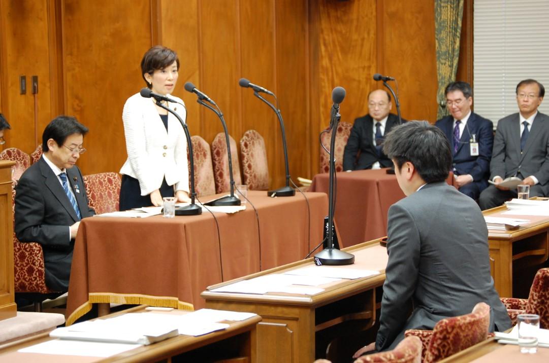 衆院予算委員会第5分科会(2015/3/10)2