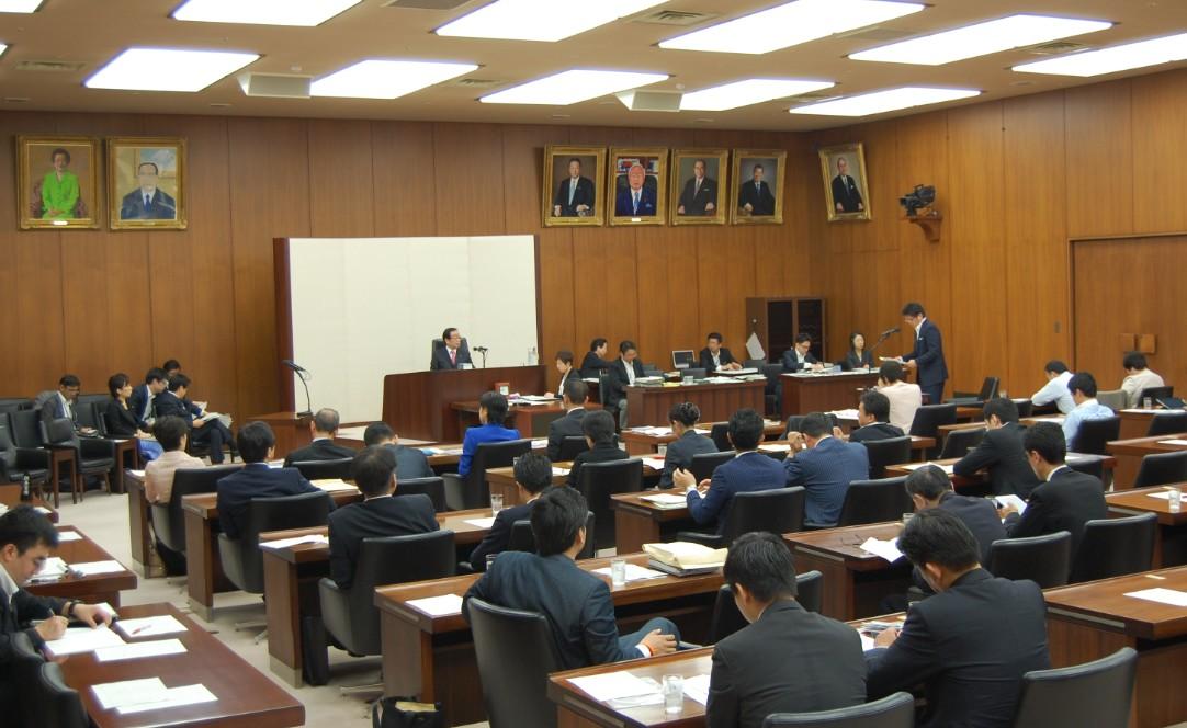 衆院厚生労働委員会(2015/6/3)6