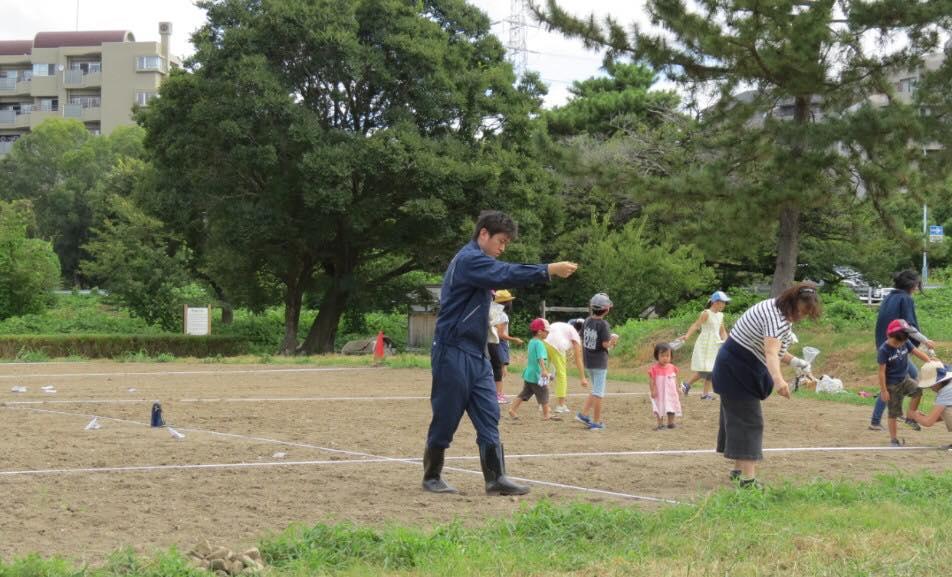 武庫川河川敷のコスモスの種まきに参加