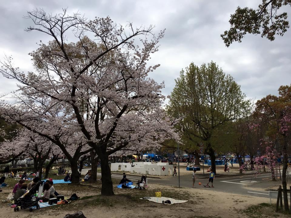 西武庫公園の桜祭りに参加