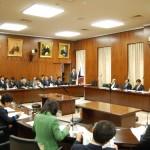 160419参議院 内閣委員会(答弁)④